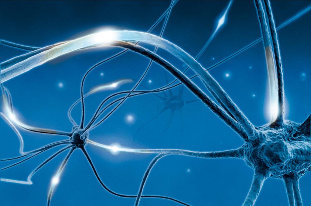 Neuronale Leitfähigkeit